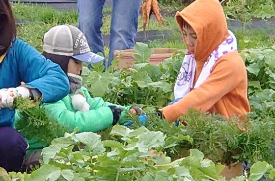体験農園第16回開催