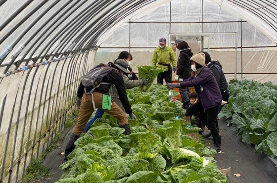体験農園第35,36回開催